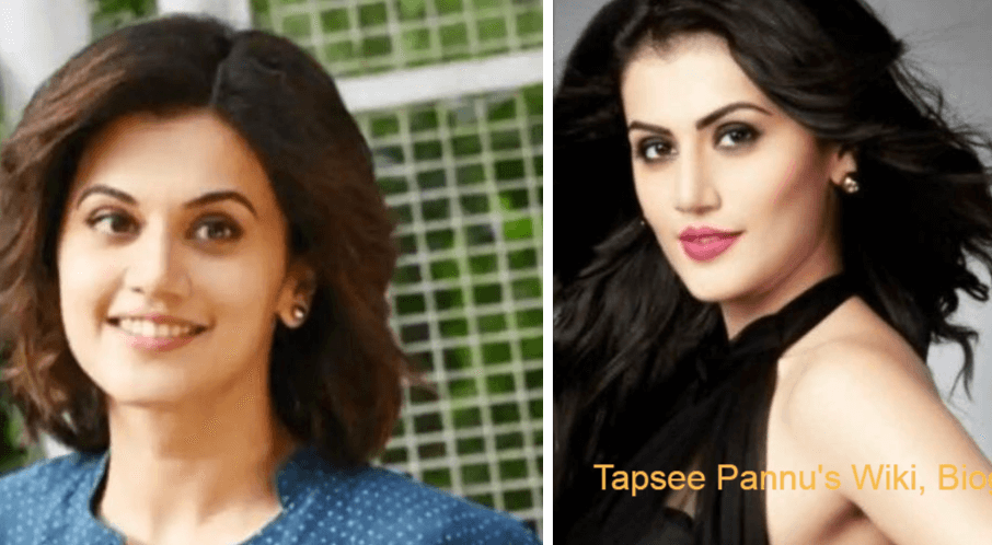 Tapsee Pannu's Wiki, Biography