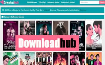 Downloadhub 2020: You can Watch Bollywood Movies Online Download ,Downloadhub Telugu Movies, Hollywood Movies, Hindi Dubbed movies